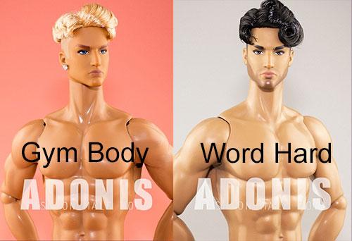 http://www.magmaheritage.com/Adonis/adonis.jpg
